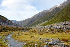 Der Berg und die Wiese Lizenzfreie Stockbilder