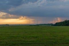 Der bewölkte Himmel und das Feld Stockfotos