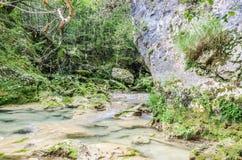 Der blaue Fluss Stockbild
