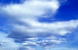 Der blaue Himmel. Lizenzfreie Stockfotos