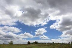 Der blaue Himmel taucht durch dichte Wolken über der Sommerwiese auf Stockbilder