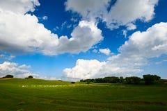 Der blaue Himmel und die weißen Wolken Stockfoto