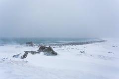 Der Blizzard über der Seeküste Stockbild