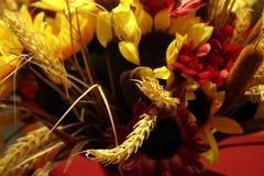 Der Blume Leben noch. Stockfotos