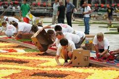 Der Blumen-Teppich 2012 Lizenzfreies Stockfoto