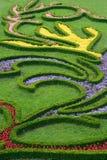 Der Blumengarten lizenzfreie stockfotografie