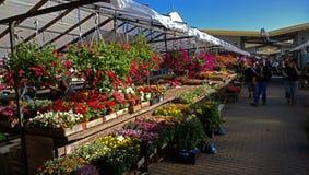 Der Blumenmarkt am sonnigen Tag Stockfoto