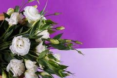 Der Blumenstrauß des weißen Eustoma Abschluss oben Lizenzfreie Stockbilder