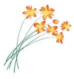 Der Blumenstrauß am Geburtsdatum vektor abbildung