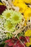 Der Blumenstrauß im Detail Stockfotos
