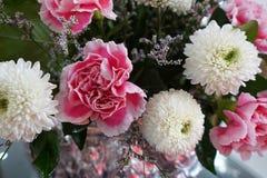 Der Blumenstrauß der rosa Gartennelke und der weißen Chrysantheme lizenzfreie stockfotografie