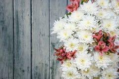 Der Blumenstrauß von weißen Chrysanthemen auf grauem blauem hölzernem Hintergrund Lizenzfreie Stockfotos