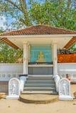 Der BO-Baum von Thaniwalla Devalaya lizenzfreie stockfotografie