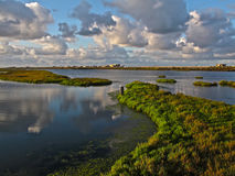 Der Bolsa Chica Wetlands, Kalifornien Stockbilder