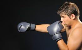 Der Boxer stockbild