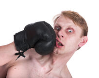 Der Boxer lizenzfreies stockbild