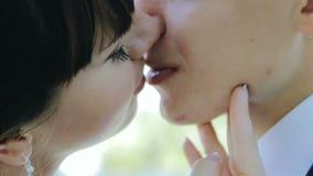 Der Bräutigam küsst die Braut in einem Park bei Sonnenuntergang die Sonne stock footage