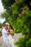 Der Bräutigam kleidete im Weiß eine schöne Braut küssend an Hochzeitspaare, die mitten in Grünpflanzen im Park küssen stockfotografie