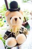 Der Bräutigamteddybär Stockfotografie