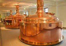 In der Brauerei lizenzfreie stockfotografie
