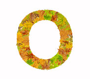 Der Buchstabe O des Alphabetes gemacht vom Herbstlaub Lizenzfreies Stockbild