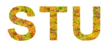 Der Buchstabe S, T und U des Alphabetes gemacht vom Herbstlaub Lizenzfreie Stockfotografie