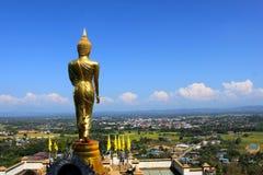Der Buddha Stockbilder