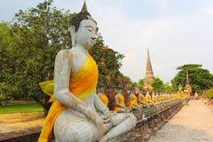 Der Buddha in der alten Stadt von Ayutthaya, Thailand. Stockfotografie