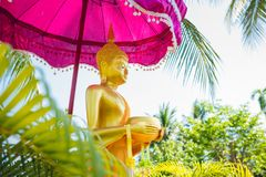 Der Buddha steht unter dem purpurroten Regenschirm in Natur vorbereitetem f Stockfotografie