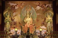 Der Buddha-Zahn-Relikt-Tempel und das Museum stockbild