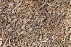 Der bunte gefallene Herbst verlässt auf braunem Waldboden Lizenzfreies Stockbild