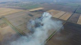 Der Burning des Reisstrohs auf den Gebieten Rauchen Sie vom Burning des Reisstrohs in den Kontrollen Feuer auf dem Feld Lizenzfreie Stockbilder