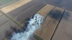 Der Burning des Reisstrohs auf den Gebieten Rauchen Sie vom Burning des Reisstrohs in den Kontrollen Feuer auf dem Feld Stockbilder