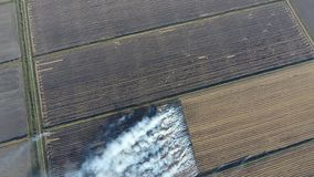 Der Burning des Reisstrohs auf den Gebieten Rauchen Sie vom Burning des Reisstrohs in den Kontrollen Feuer auf dem Feld Lizenzfreies Stockbild