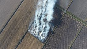 Der Burning des Reisstrohs auf den Gebieten Rauchen Sie vom Burning des Reisstrohs in den Kontrollen Feuer auf dem Feld Stockfotos