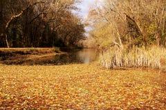 Der C&O Kanal Stockbild