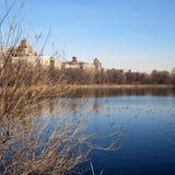 Central Park See Stockbild