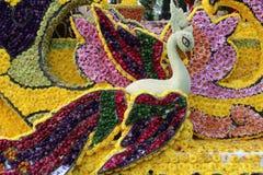 Der 39. Chiang Mai Flower Festival 2015 Stockfoto