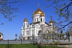 Der Christus die Retter-Kathedrale mit goldenen Hauben in Moskau Lizenzfreie Stockfotografie