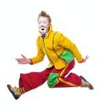 Der Clown Stockbilder