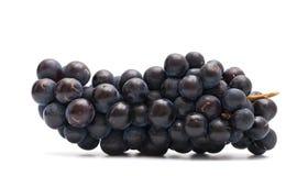 Der Cluster der Trauben Stockfoto