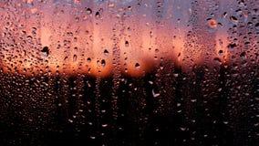 Der dauerhafte Regen 4 Stockfotografie