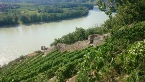 Der Donau-Fluss Stockbild