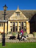 Der Dorf-Frau Cotswolds England Broadway gehende Hunde stockbild