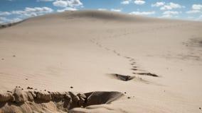 Der Durchgang des Mannes in der Wüste am Mittag Stockfotografie