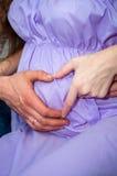 Der Ehemann und die Frau, die Mutter und der Vati halten Hände mit Beuten auf dem Bauch Schwangerschaft Stockfotografie