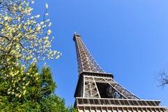 Der Eiffelturm in Paris Stockfoto