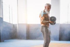 Der Eignungsbartmann, der Bizepscurlübung innerhalb einer Turnhalle tut - tätowieren Sie Training des älteren Mannes mit Dummköpf stockbilder