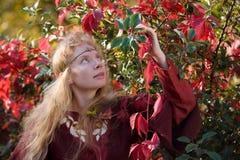 Der Elf im Herbstwald Stockbild