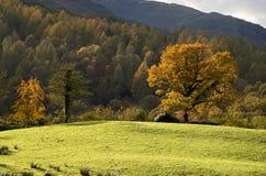 Der englische See-Bezirk im Herbst (Fall) Lizenzfreie Stockfotos
